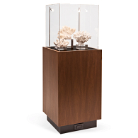 Gaylord® Delphi™ Apollo Exhibit Case