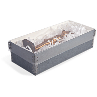 Gaylord® Clear Shallow Lid Archival Multipurpose Box