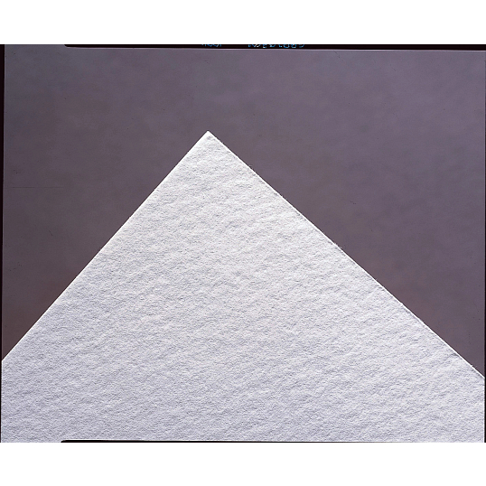 Unbuffered Blotting Paper (50-Pack)