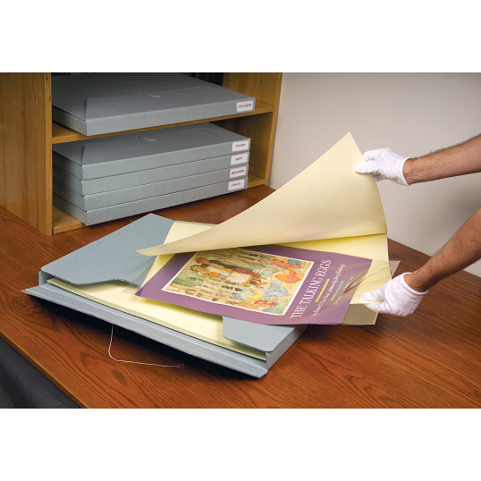 3 mil Archival Polyester L-Sleeves for Ackley Filing System (5-Pack)