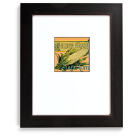 Gaylord Archival® Spectrum Collection Wood Frame Kit with Gold Accents