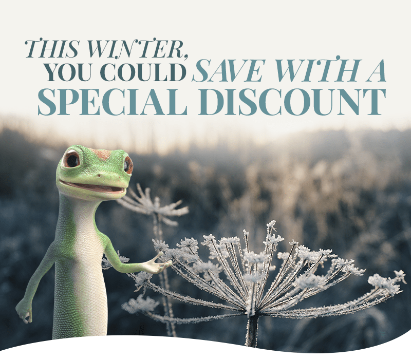 This Winter, You Could Save With A Special Discount