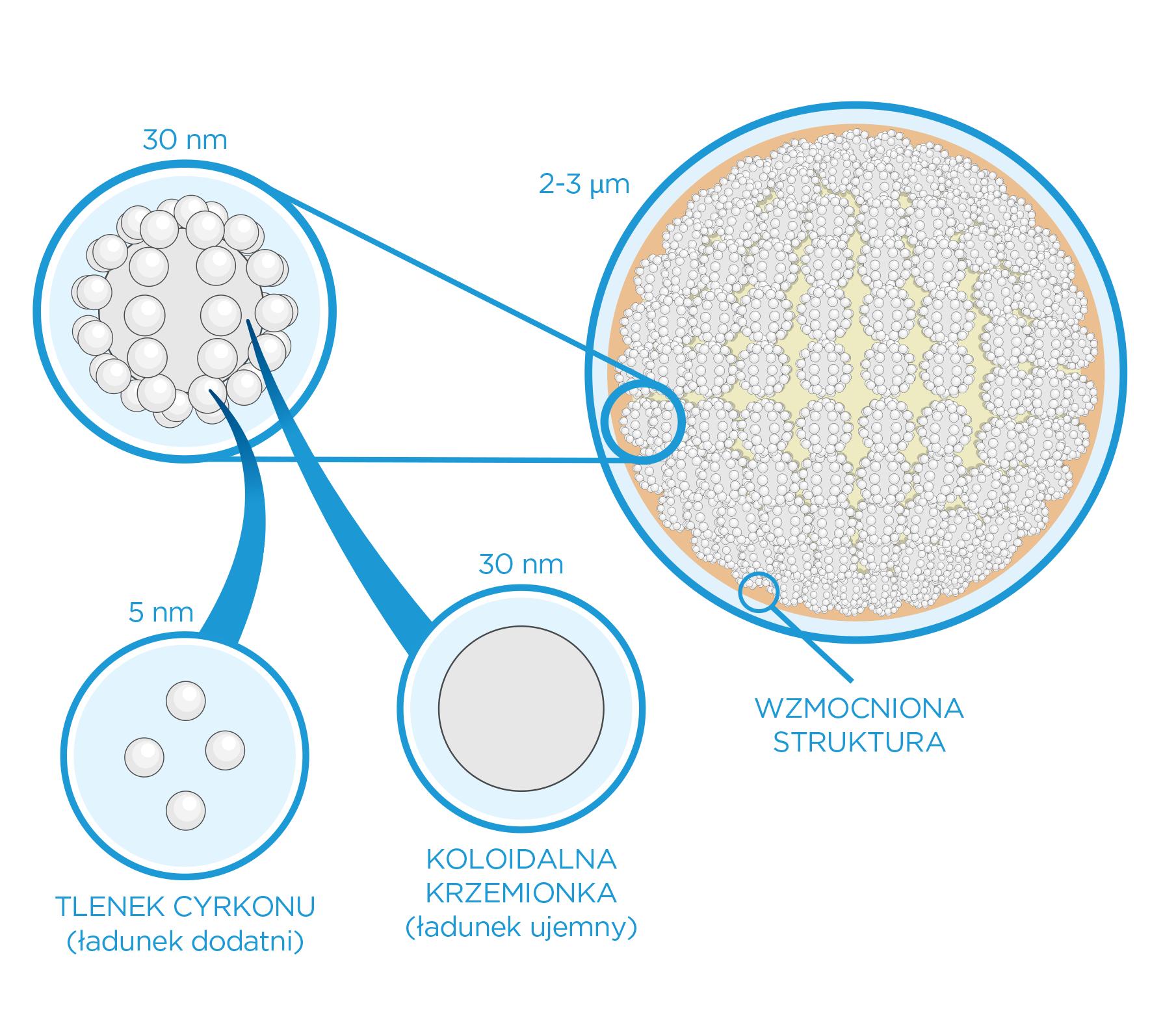 PL_harmonize-wzmoniona-struktura-wypeniacza