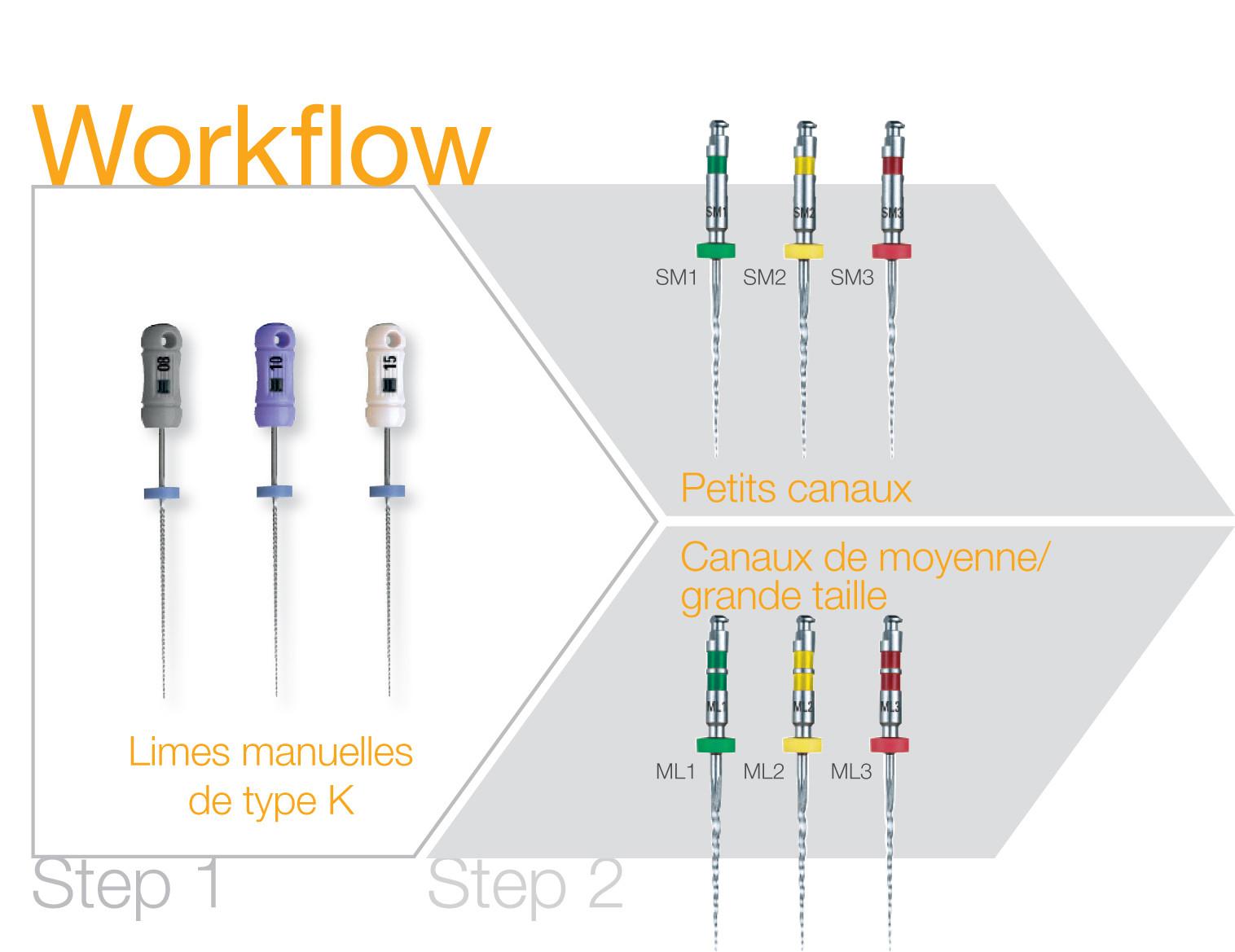 FR_Workflow