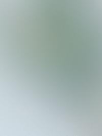 925_CU
