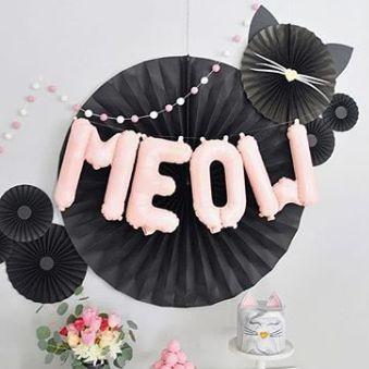 NS_insta_meow