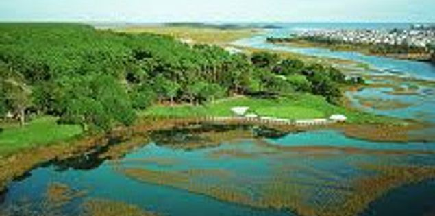 Intracoastal Waterway at Tidewater Golf Club