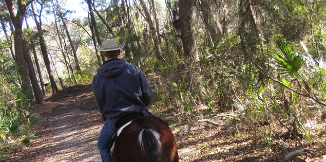 Horseback riding in Hilton Head Island's Sea Pines Forest Preserve