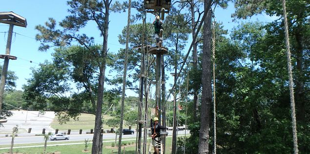 Radical ropes zipline course