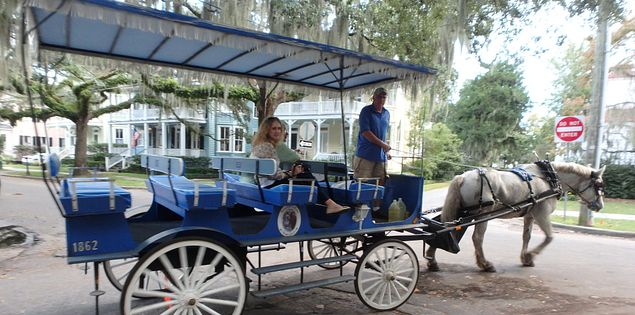Historic Carriage ride in Beaufort