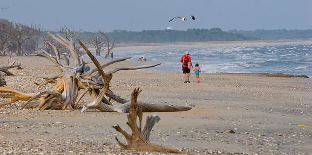 The beaches of Botany Bay on Edisto Island near Charleston