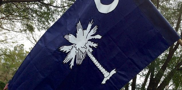 South Carolina's flag