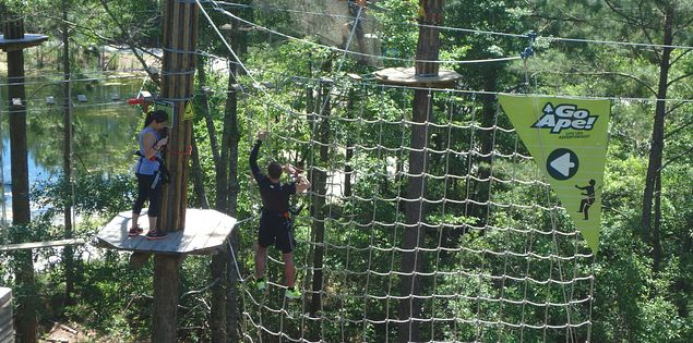 Zipline at Go Ape