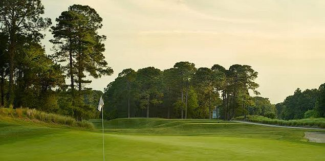 Cupp course Palmetto Hall