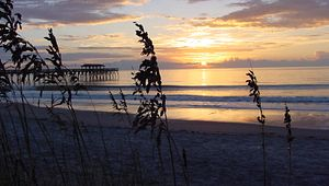 Discover the Many Ways to Enjoy the Outdoors in Myrtle Beach