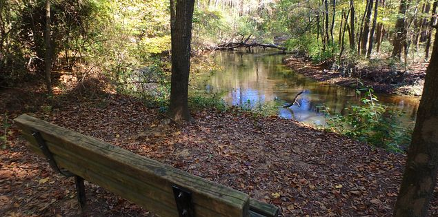 Cayce Congaree trail