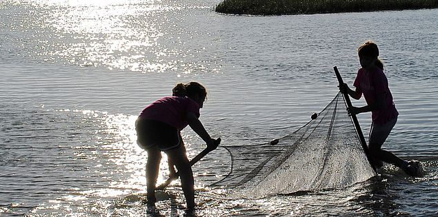 kids fishing seining