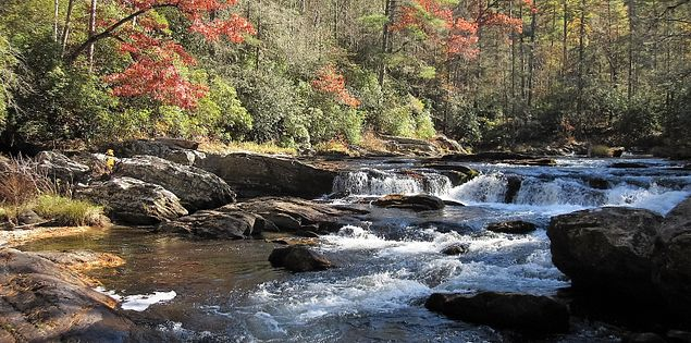 Chattooga Foothills