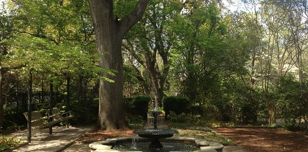Visit the SC Governor's Mansion Gardens the next time you're looking for things to do in South Carolina.
