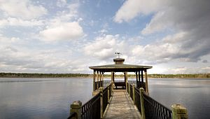 Lake Warren State Park Offers Outstanding Freshwater Fishing in the Lowcountry