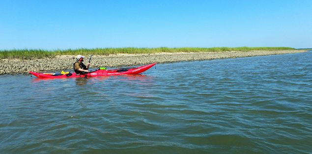 Oyster beds kayaker