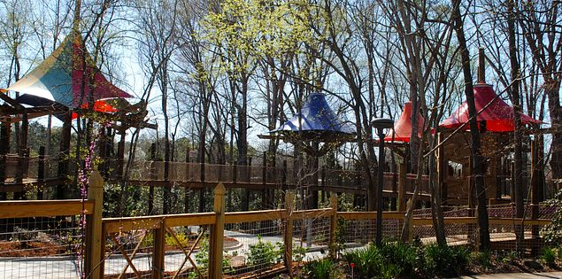 treehouses at Waterfall Junction