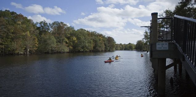 Kayaking the Black River in Myrtle Beach, SC.