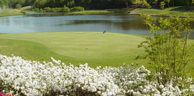 There are a variety of great options when it comes to golf courses in Upstate SC.