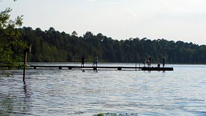 8 South Carolina State Parks That Offer Old-Fashioned Swimming Holes