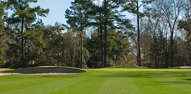 Golf courses in Charleston, SC, offer premier golf experiences.