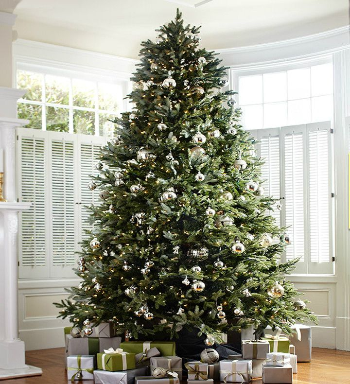 How To Choose The Right Christmas Tree Height Balsam Hill