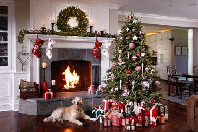 dog and christmas tree