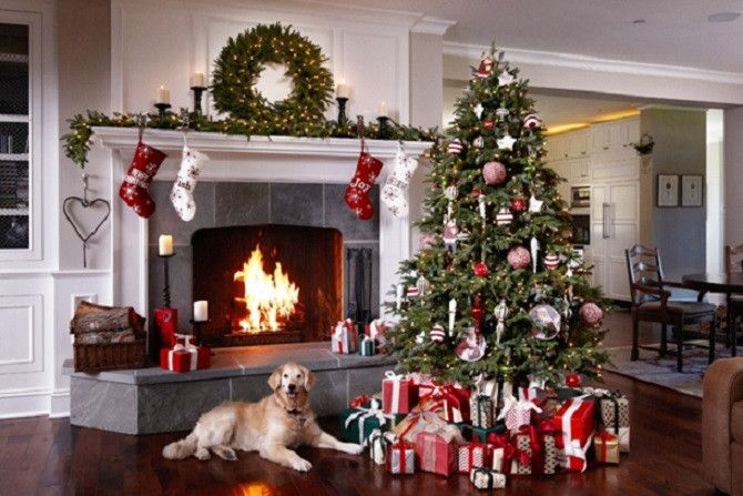 How To Make Your Christmas Tree Pet Friendly Balsam Hill