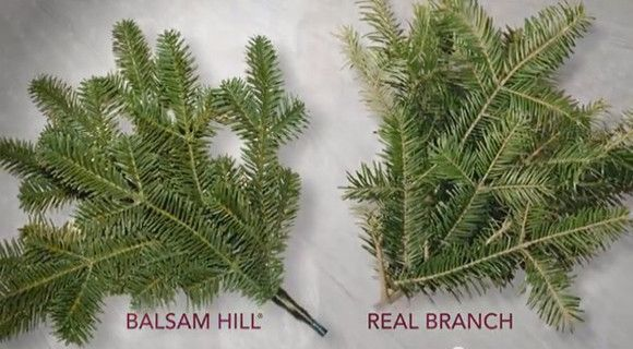 Traditional vs. Realistic Christmas Tree | Balsam Hill
