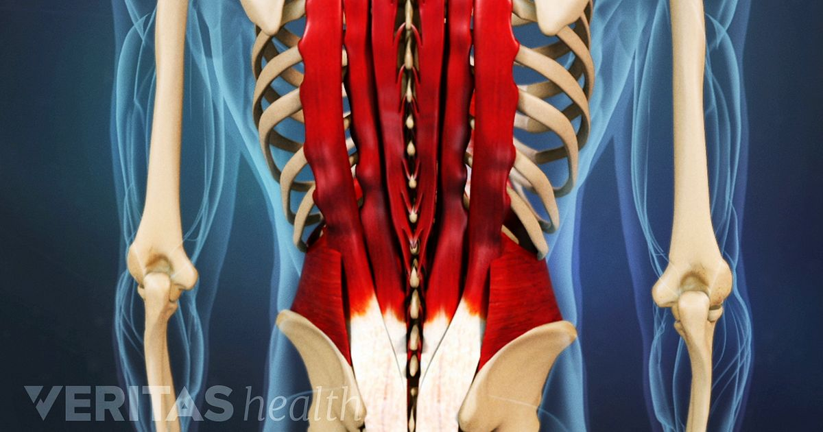 Ripped Lower Back Pulled Back Muscle Tre...