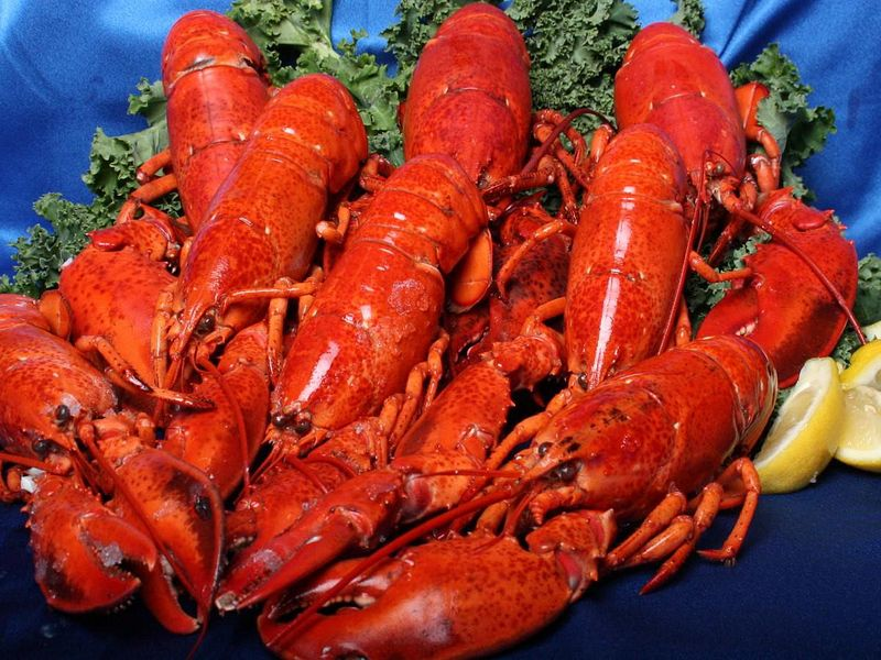 1 SELLER POCONO LOBSTER SEAFEAST | Amazing Destinations | Group ...