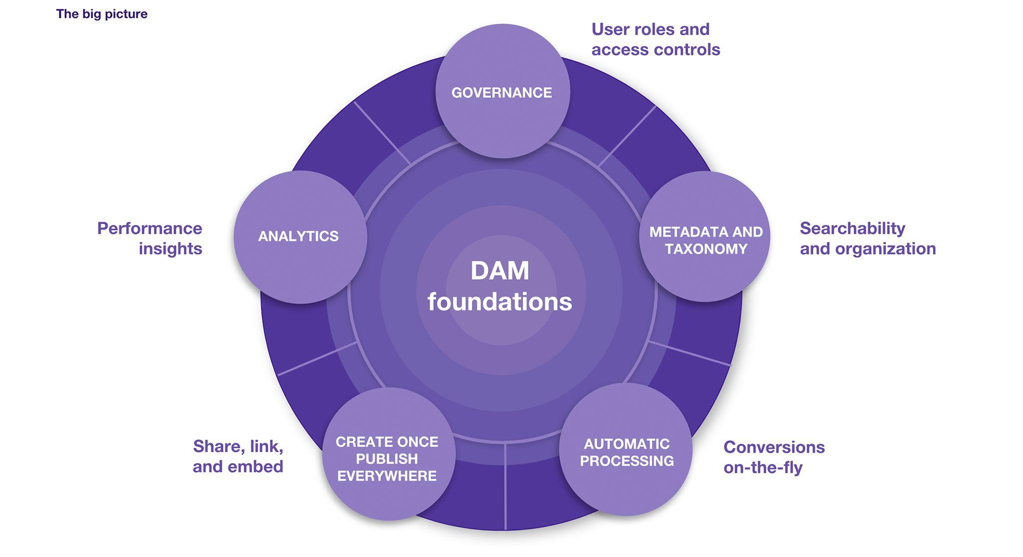 DAM Foundations Model