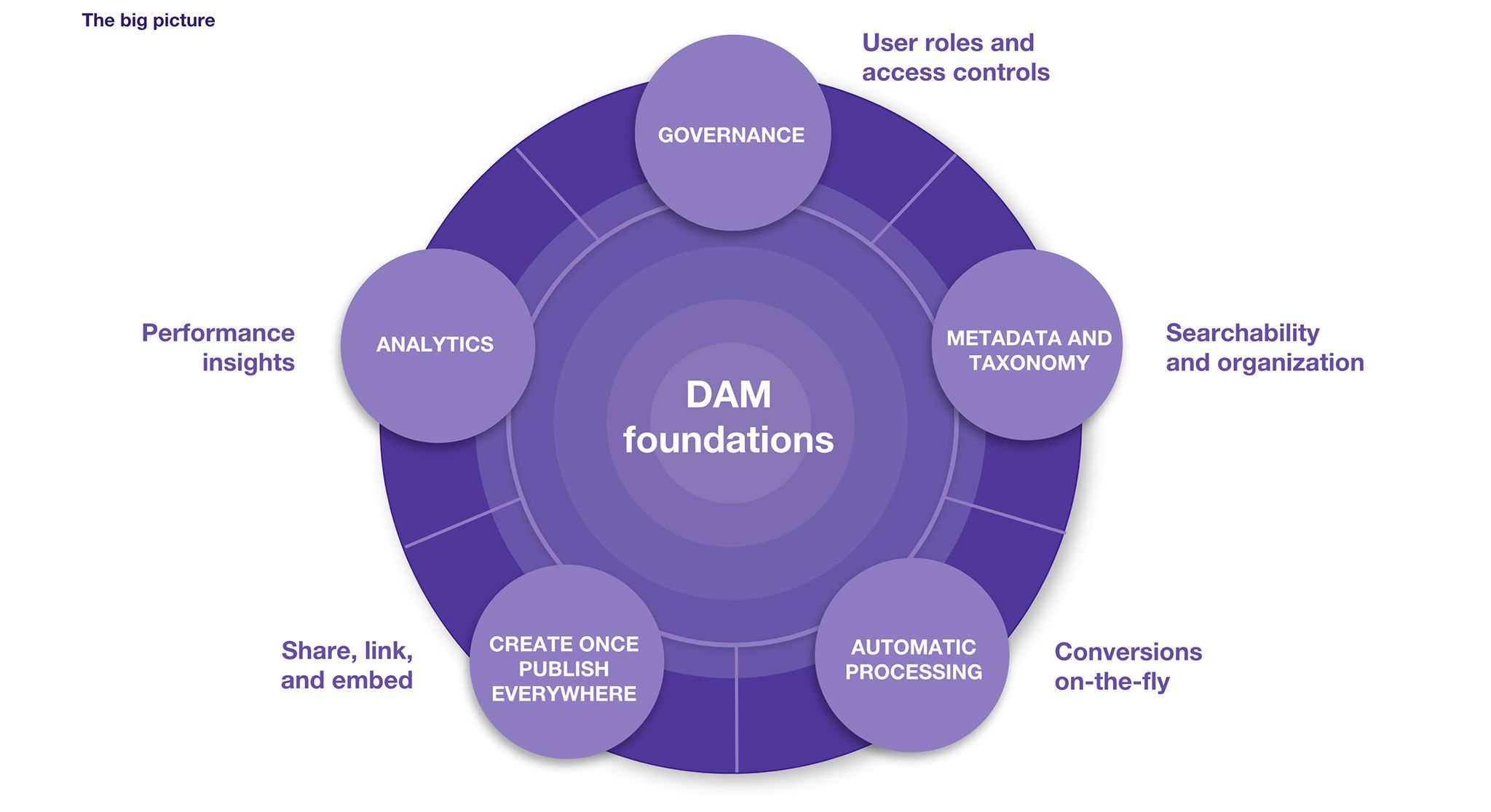 DAM Foundations Model