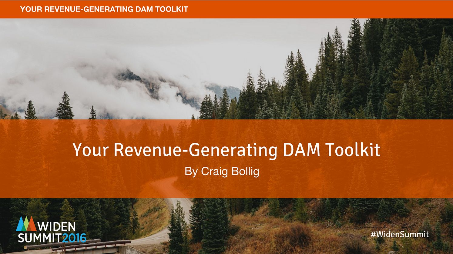 Revenue Generating DAM Software Toolkit