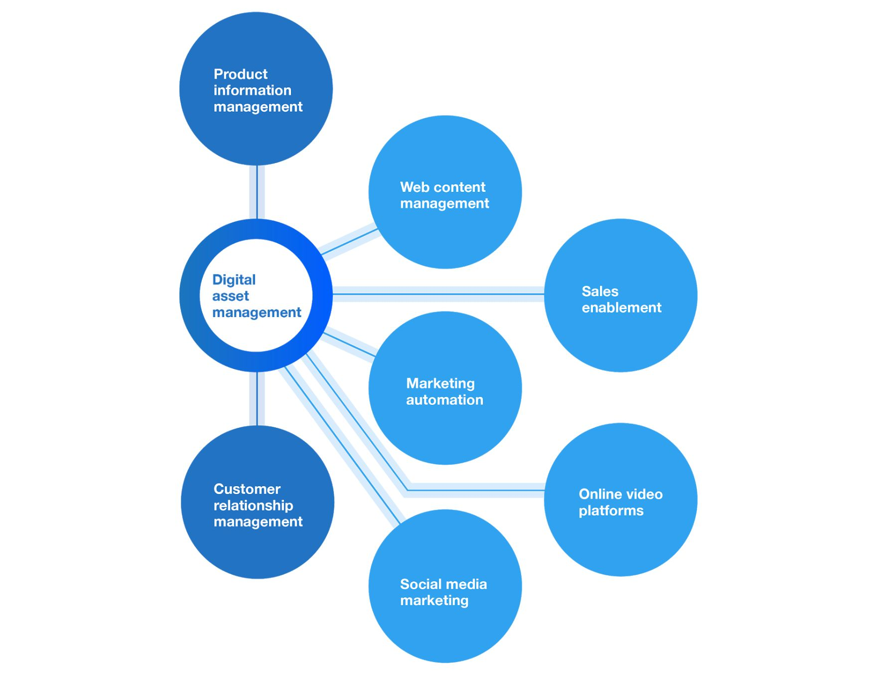 DAM distribution ecosystem