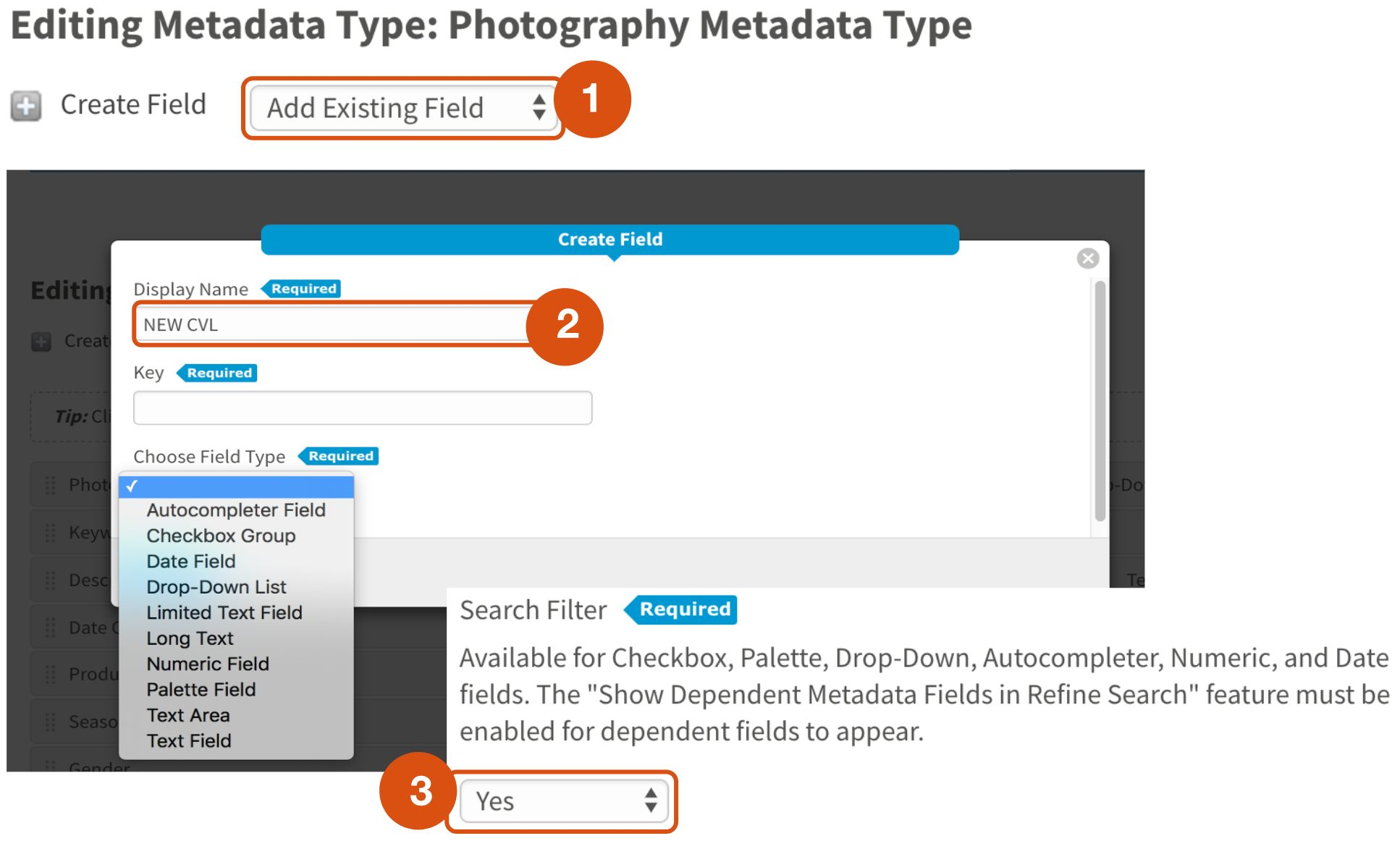 create a new controlled vocabulary metadata field
