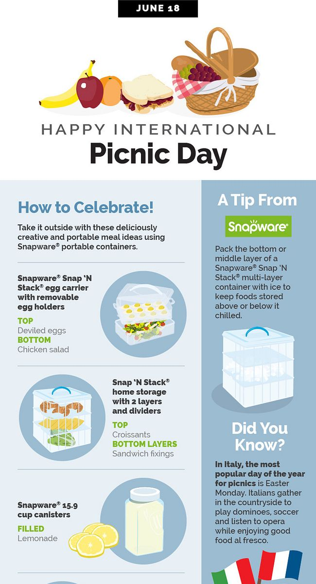 World Kitchen | Happy International Picnic Day Infographic