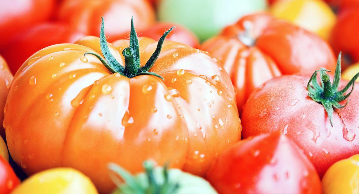 Top Tomato Tips