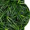 Mondo_Grass