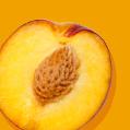Nectarine_Icon