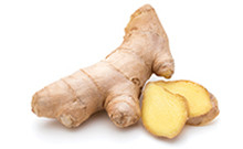 botanical_Ginger_Oil