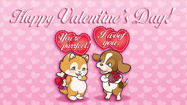 Valentines Day Pets Bingo Equipment/Flashboards/MaxFlash>Promotional Materials/Advertisements