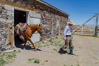 Smith Creek Ranch, LTD