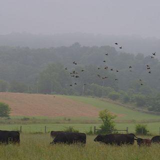Glenowen Farm LLC