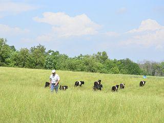 Sherwood Acres Farm